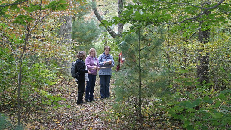The Women and Their Woods educational retreat offers opportunities for hands-on learning, networking, and skill sharing in a friendly, peer-learning environment. Applications are now being accepted.
