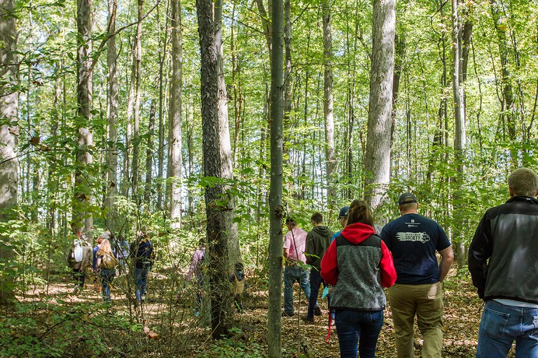 Join fellow Pennsylvanians across the state in a woods walk near you on Sunday, October 7! (Photo by Laura Kirt, Laura Kirt Studios)