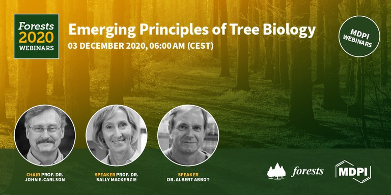 Emerging Principles of Tree Biology webinar banner