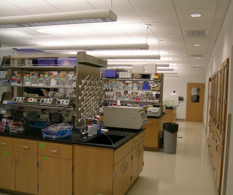 The Schatz Center lab