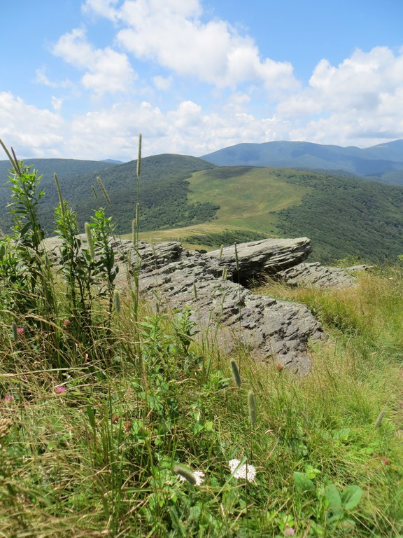 View from Little Hump Mountain, NC and TN state line