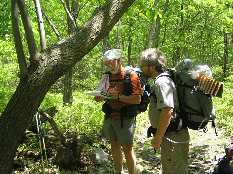 Hikers taking data on a large American chestnut tree near Sunfish Pond in New Jersey