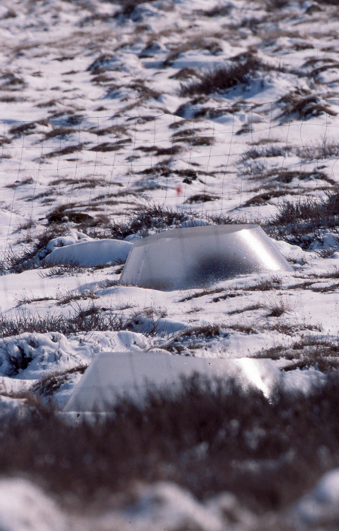 Itex cones used for warming experiments in Greenland