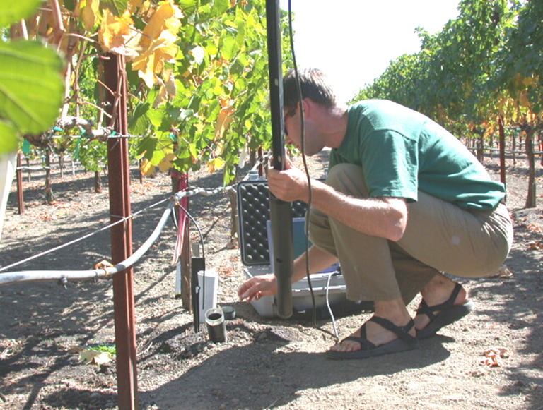Marc Goebel taking images of roots with a minirhizotron camera in a California vineyard