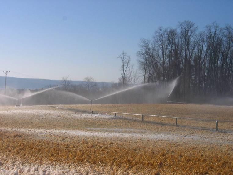 Living Filter Irrigation