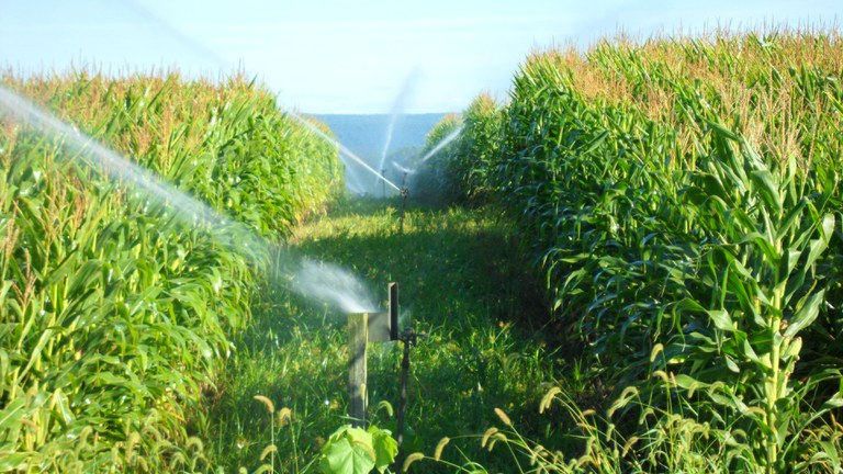 Spray Irrigation Field, Penn State's Living Filter Astronomy Site